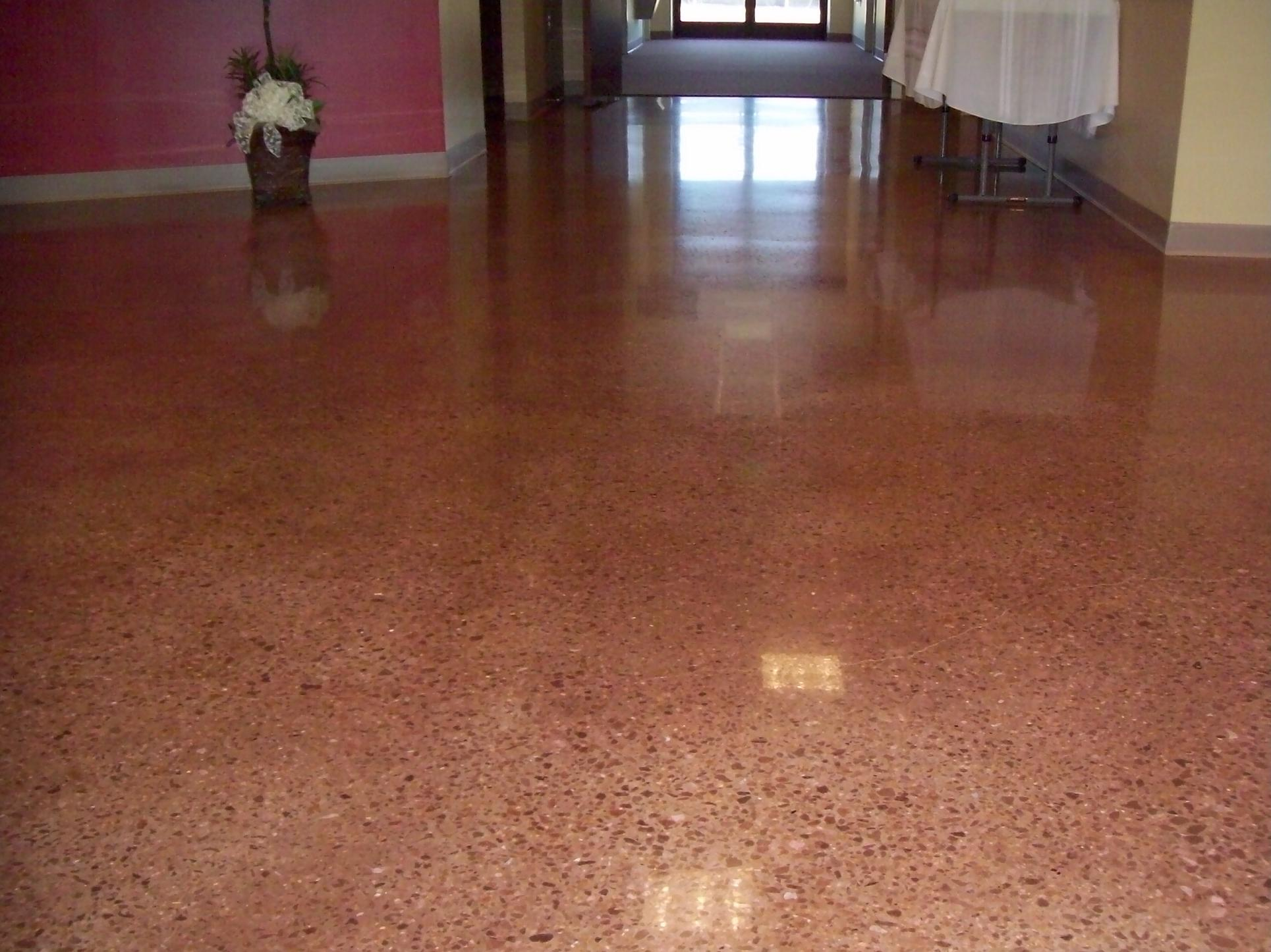 Polished concrete with saddle brown dye